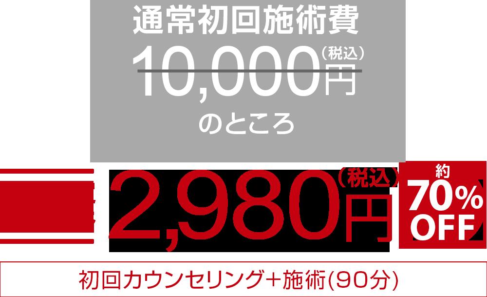 初回限定特別価格1,980円 約80%OFF